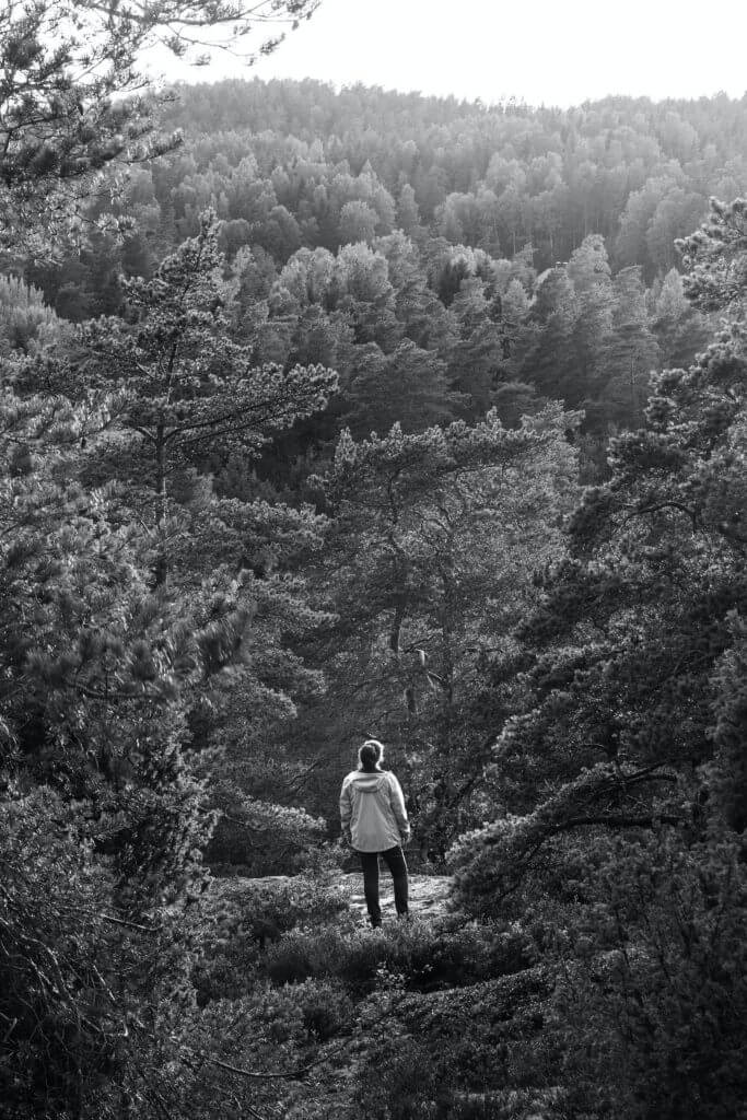 grayscale photo of man in black jacket and pants walking on pathway surrounded by trees